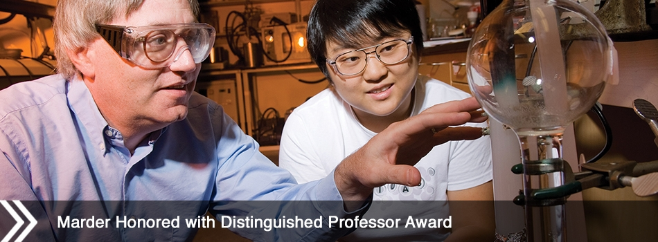 Marder Honored with Distinguished Professor Award